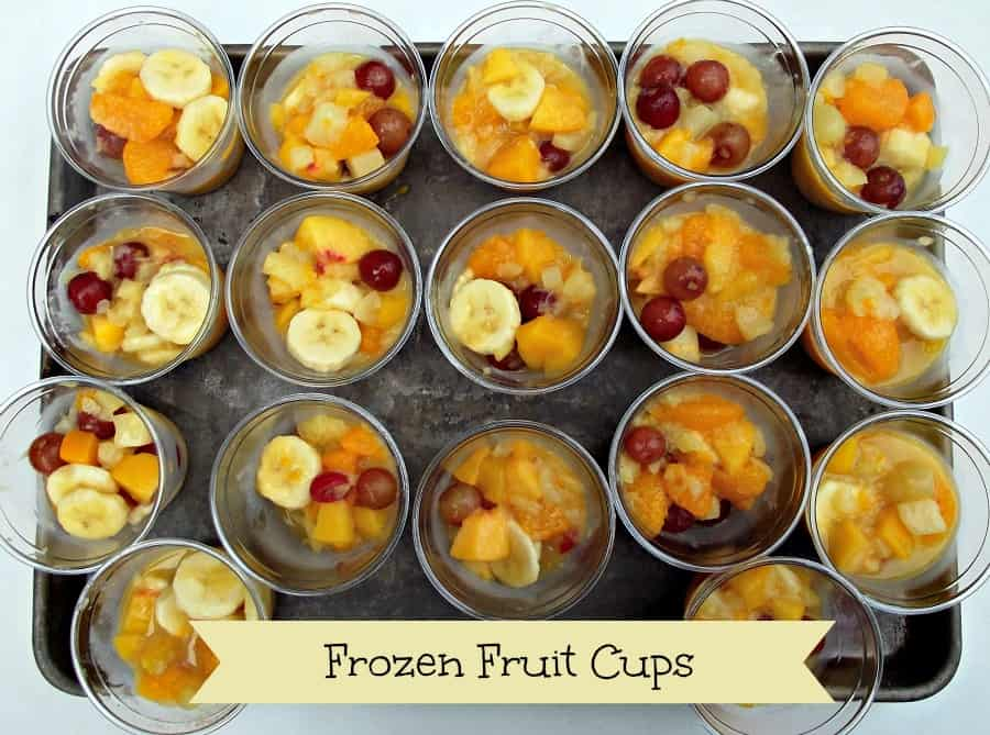 Frozen Fruit Cups -Home in the Finger Lakes