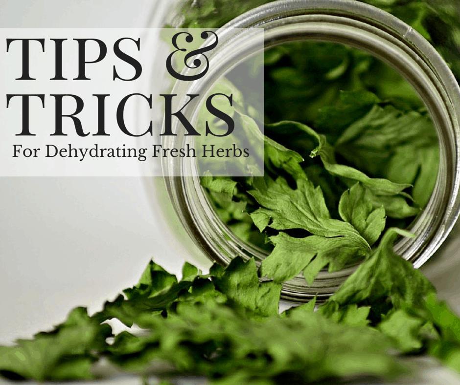 Dehydrating Fresh Herbs