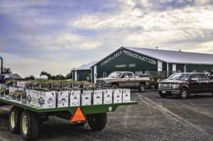 New York State Produce Auctions