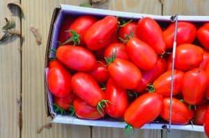 Fresh Oven Roasted Tomato Sauce (1 of 2)